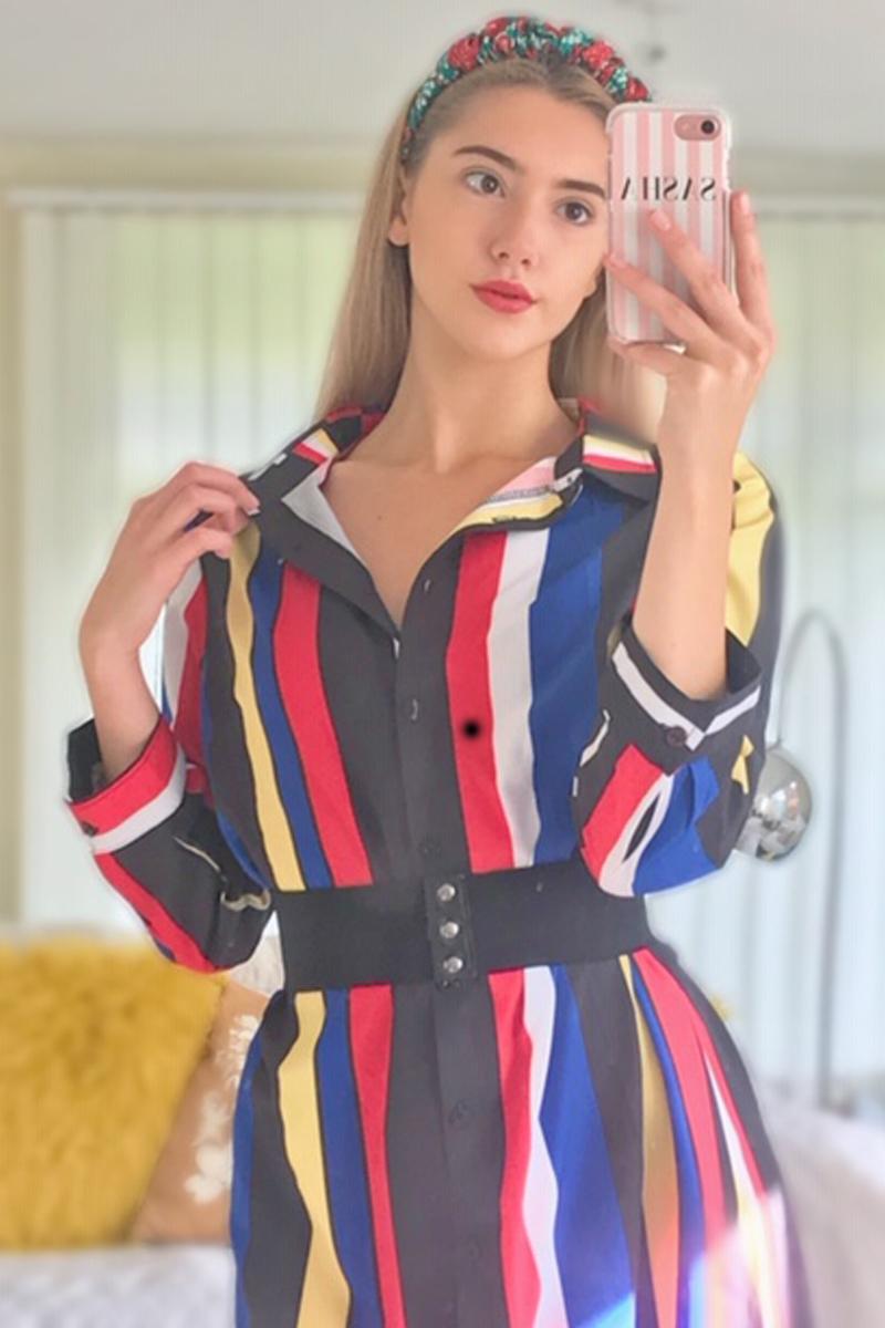 Turndown Collar Multicolor Striped Button Up Dress