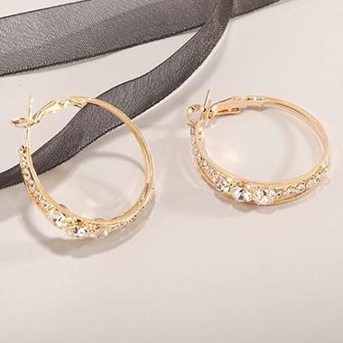 Metal Detail Rhinestone Circle Design Earring Set